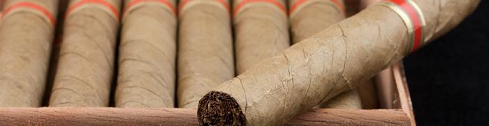 Cigar shop business plan